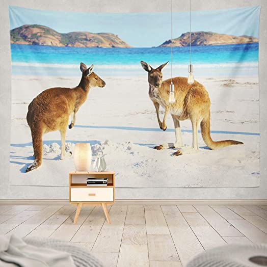 KJONG Two Western Grey Beach National Park Western Australia Kangaroo Beach Australia Cute Animal Sand Wild WildlifeDecorative Tapestry,60X80 Inches Wall Hanging Tapestry for Bedroom Living Room