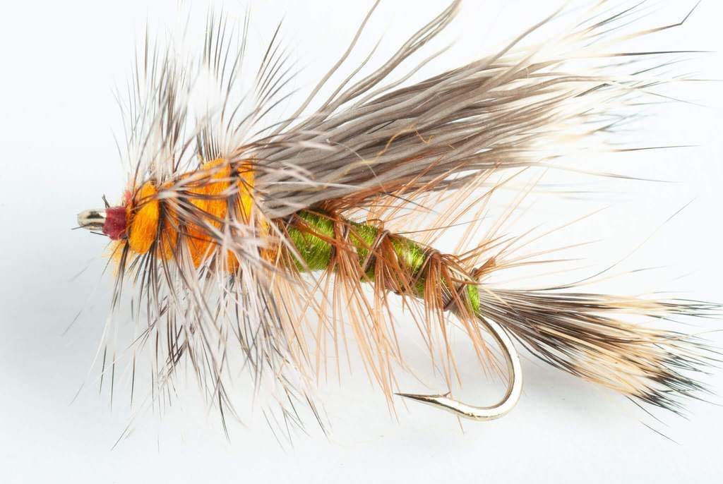 Blue Wing Olive CDC Caddis Dry Fly 6 Pack