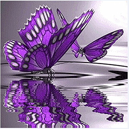 Butterfly Flowers Diamond Embroidery 5D Diamond DIY Painting Cross Stitch Crafts,DIY Handmade Needlework Set Cross-Stitching Pre-Printed Patterns Embroidery Home Decoration (Multicolor, 30×30cm)