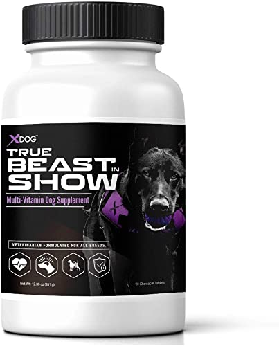 XDOG True Beast in Show Multi-Vitamin Dog Supplement 90 Chewable Tablets – Veterinarian Formulated for All Breeds