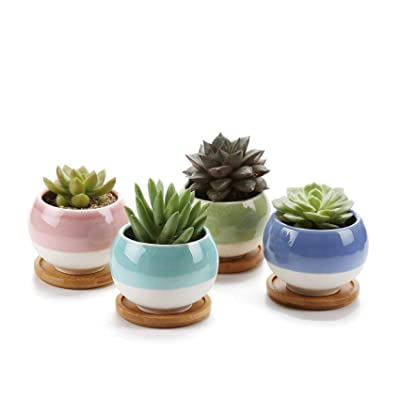 """3"""" Ceramic Succulent Planters Glazed Cactus Pots with Drainage Trays Ball Shape Set of 4, Colorful Small Window Boxes for Home Décor with Bamboo Saucer: Garden & Outdoor"""