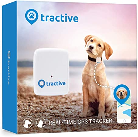 Tractive GPS Dog Tracker - Location Tracker with Unlimited Range: Amazon.co.uk: Pet Supplies