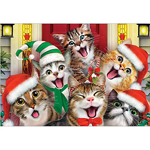 Tree-Free Greetings Christmas Cards and Envelopes, Holiday Card Set, 5 x 7 Inch Blank Cards, Box Set of 10, Xmas Cat Selfies, -