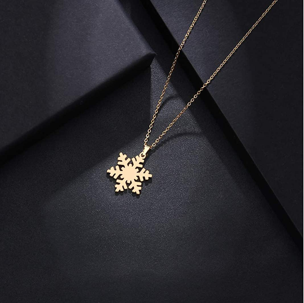 Haiyuan Ladies Necklace Stainless steel necklace ladies mens lover snow gold silver pendant necklace engagement jewelry