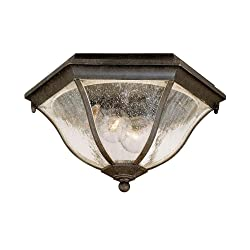 Acclaim 5615BC Flush Mount Collection 2-Light Ceiling Mount Outdoor Light Fixture, Black Coral