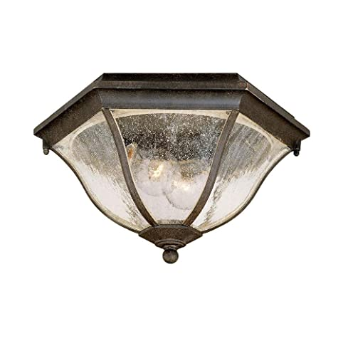 Acclaim 5615BC Flush Mount Collection 2 Light Ceiling Mount Outdoor Light  Fixture, Black Coral
