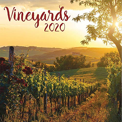 Vineyards 2020 Calendar by Inc. Lang Companies