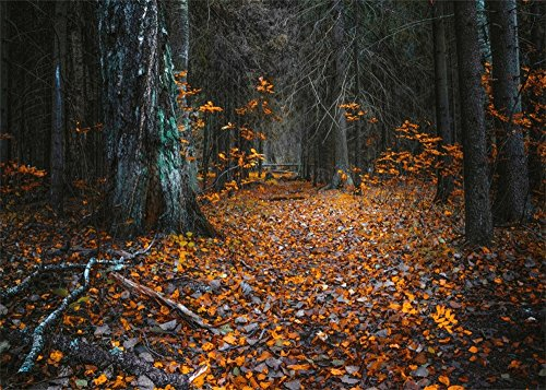 Leowefowa 10X8FT Scary Forest Night View Backdrop Yellow Maple Leaf Horror View Backdrops for Photography Autumn Halloween Vinyl Photo Background Costume Party Studio Props]()