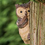 Bits and Pieces - Keep Quiet Owl Tree Peeker - Durable Polyresin Animal Tree-Hugger Sculpture - Lawn and Garden Outdoor Décor Statue