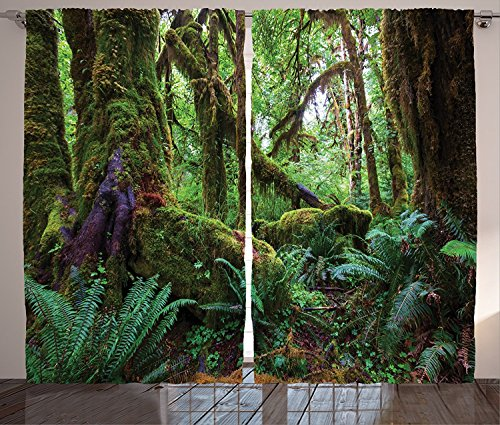 farmhouse-decor-kitchen-curtains-monsoon-tropical-jungle-with-bushes-ferns-trees-vegetation-wild-lan