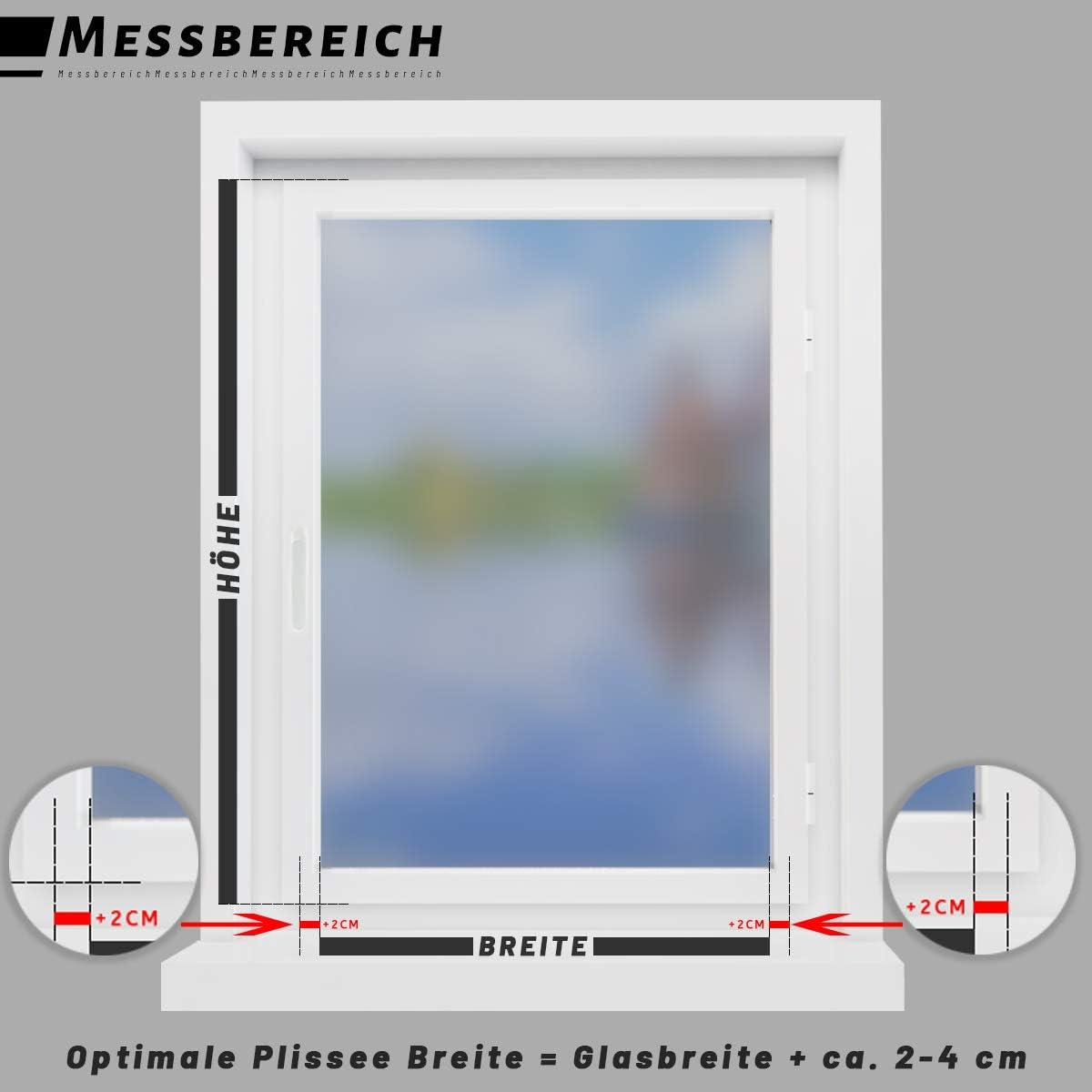 Jalousie Lichtdurchl/ässig und Blickdicht Sicht-und Sonnenschutz f/ür Fenster /& T/ür HOMEDEMO Plissee ohne Bohren Faltrollo mit klemmfix Anthrazit, 35x100cm
