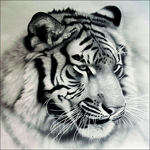 Full Diamond Rhinestone Tiger (Whitelotous Full Drill Black and White Tiger 5D Diamond Painting DIY Paint-By-Diamond Kit Home Wall Decor 30 x 30 cm)