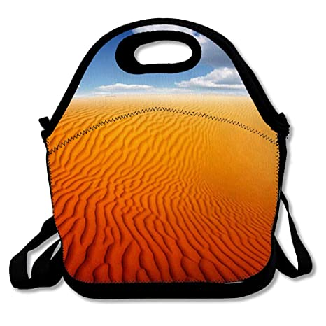 Amazon.com: Lunch Bags for Women Men Insulated Dry Orange ...