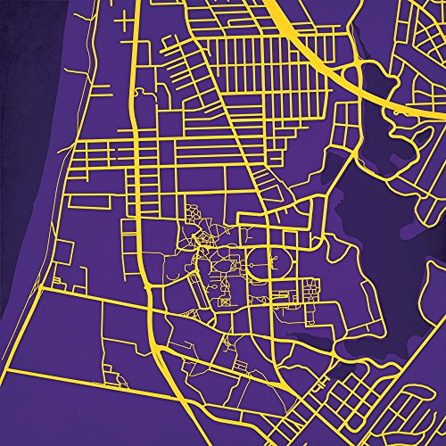 - City Prints Louisiana State University Campus Map Art, 24