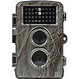 Distianert Fotocamera caccia Fotocamera da Rilevazione 8MP 720P con Visione Notturna Bagliore Basso a 65ft Impermeabile IP56 con 34pcs 850nm Spie LED infrarosso 1 anno di Garanzia