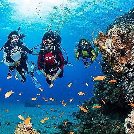 Mares Italian Design Premium Collection Ergo Dry Snorkel
