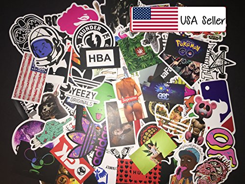 100 Piece Skateboard Stickers Vintage Vinyl Laptop Luggage