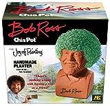 Chia Pet Bob Ross