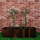 1.Go 2 Packs Garden Obelisk Metal Trellis Flower