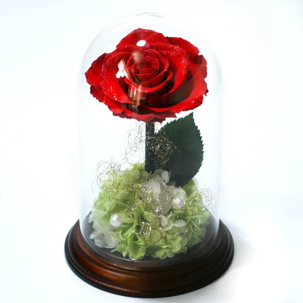 Makefuture プリンセスフルール プリザーブドフラワー ダイヤモンドローズ プロポーズ 一輪 薔薇 B01N26FVPJ