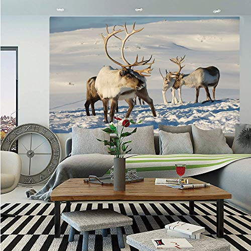 SoSung Winter Removable Wall Mural,Reindeers in Natural Environment Tromso Northern Norway Caribou Antler Wildlife Decorative,Self-Adhesive Large Wallpaper for Home Decor 66x96 - Faux Antler Birch