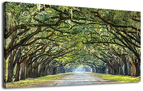Amazon.com: Canvas Wall Art Green Tree Nature Picture Prints Canvas ...