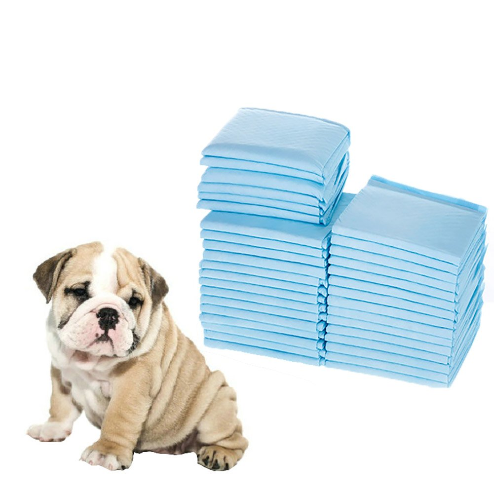 13\ Pet Training and Puppy Pads, Super-Absorbent Disposable Pee Pads for Dogs 13  x 18  100 Count
