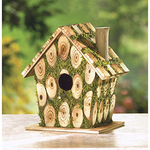 Birdhouse, Outdoor Wooden Birdhouses Build Form Plywood Wood And Eucalyptus by Songbird Valley