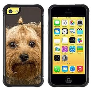 Suave TPU GEL Carcasa Funda Silicona Blando Estuche Caso de protección (para) Apple Iphone 5C / CECELL Phone case / / Yorkshire Terrier Pet Dog Cute /