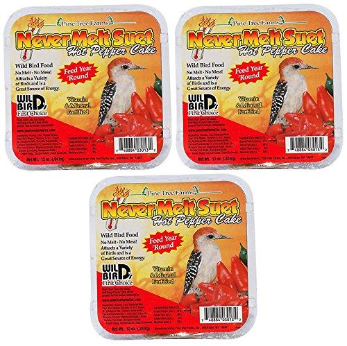 Pine Finch Feeder - Pine Tree Farms Never Melt Suet Hot Pepper Bird Food (Pack of 3)