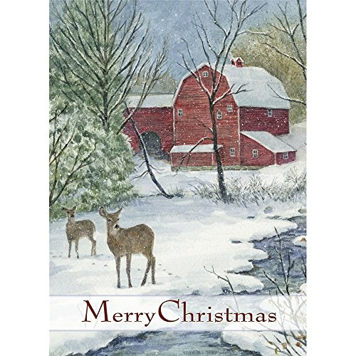 Legacy Publishing Group Deluxe Boxed Holiday Greeting Cards, Prince Of Peace (HBX23099)