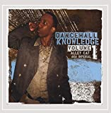 imperial cats - Dancehall Knowledge Volume 1