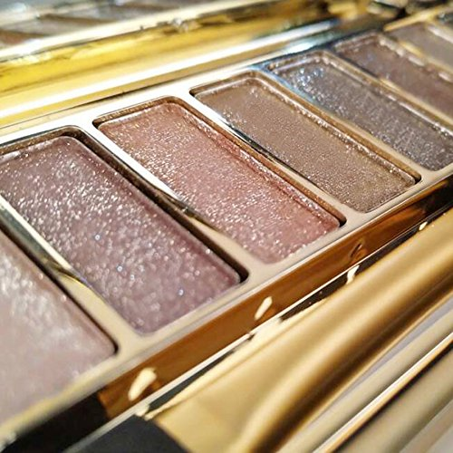 CARESHINE Eyeshadow Palette & Makeup Cosmetic Brush Set 9 Colors Shimmer Eye Shadow