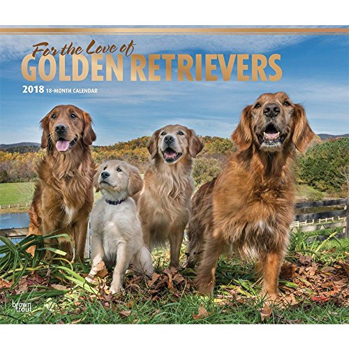 For the Love of Golden Retrievers 2018 Deluxe Wall Calendar