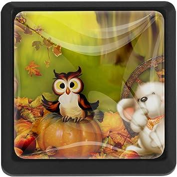 Animal Happy Thanksgiving Squirrel Owl Bear Drawer Pulls Knobs Cabinet Handles 3 Pack Kitchen Cabinet Pulls Cabinet Knobs Amazon Com