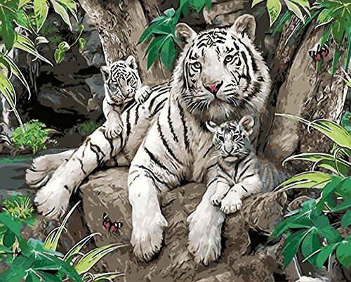 Tigers London - Wooden Framed Paint by Number or Not Diy Oil Painting by Numbers - White Tiger and Her Kids 1620 inches - PBN Kit for Adults Beginner Girls Kids Picture Decor Decorations Gifts