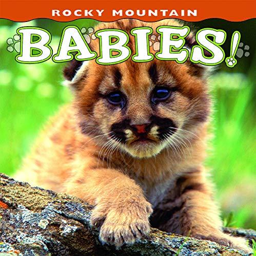 s! (Babies! Animal) ()