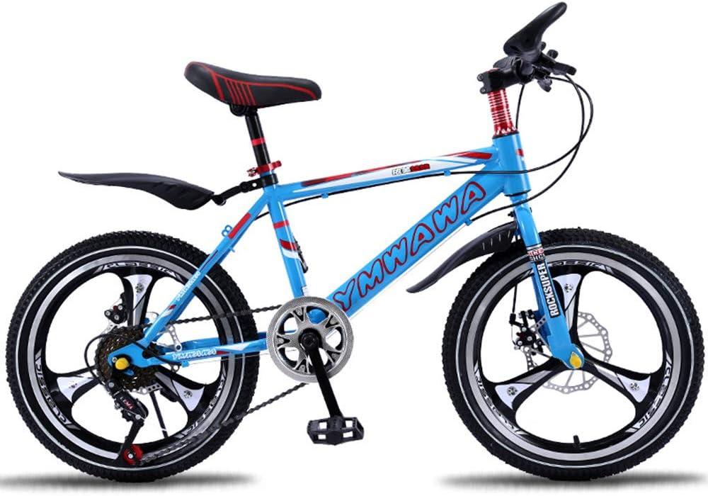 LISI Bicicleta de montaña para niños Bicicleta 18/20 Pulgadas ...