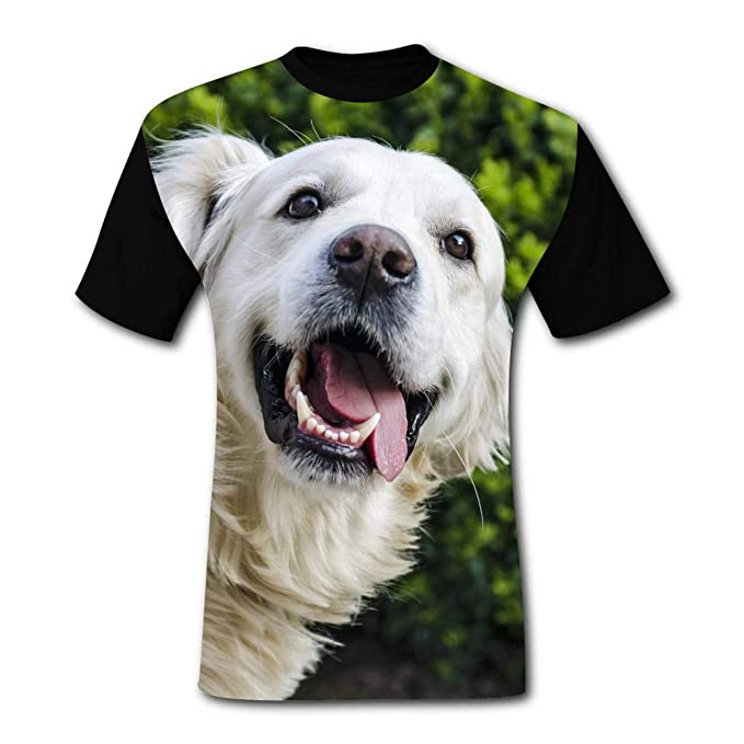 bf6eb0cd51 SDFWE DFEAD Mens Leisure Golden Retriever Design T-Shirt Short Sleeve Tee  Shirts 3XL Black