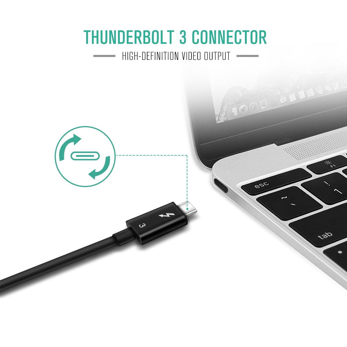 Amazon.com: Adaptador Thunderbolt 3 A Dual DisplayPort ...
