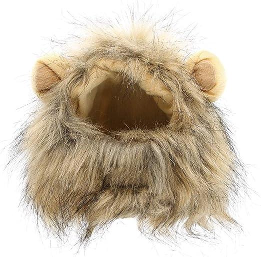 Odfbgfj Peluca del Animal doméstico del Animal doméstico de la Cabeza de la Cabeza del león del Gato del Sombrero del Perro casero para Halloween (Color : Gray): Amazon.es: Productos para mascotas