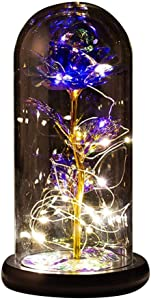 Beauty and The Beast Rose,Galaxy Rose in Glass Dome Wooden Base for Home Decoration Best Gift Valentine\'s Day Mother\'s Day Christmas Anniversary Birthday Thanksgiving Day (Gold leaf purple flower)