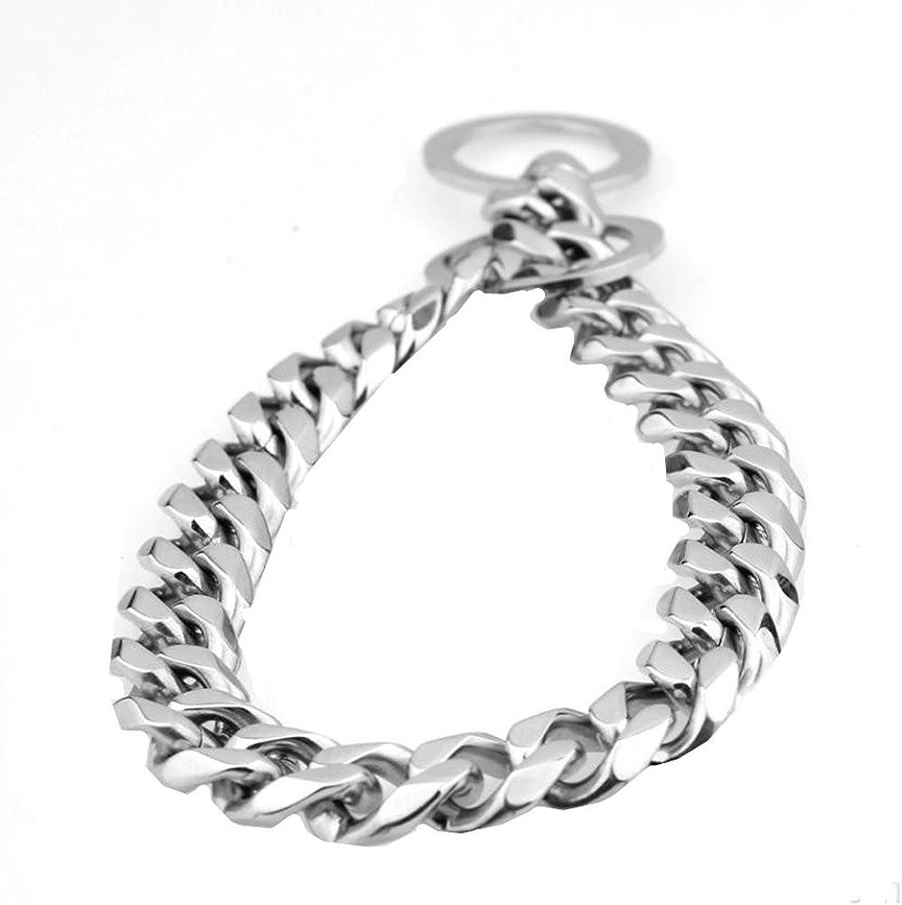 Ubeauty1999 - Collar de cadena de acero inoxidable 316L para entrenamiento de perro, 19 mm, color plateado Acero inoxidable