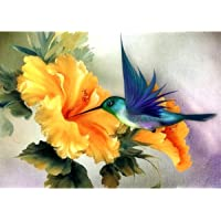 ACANDYL Paint by Number Hummingbird DIY Oil Painting Paint by Number Kit for Kids Adults Students Beginner Canvas…