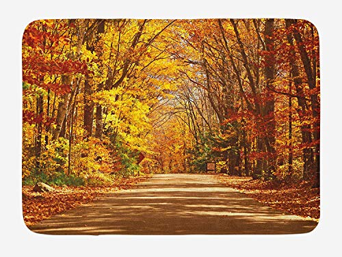 Fall Bath Mat, Scenic View Outdoors Empty Roadway Surrounded with Deciduous Trees Image, Plush Bathroom Decor Mat with Non Slip Backing, 23.6 W X 15.7 W Inches, Redwood Yellow Orange ()