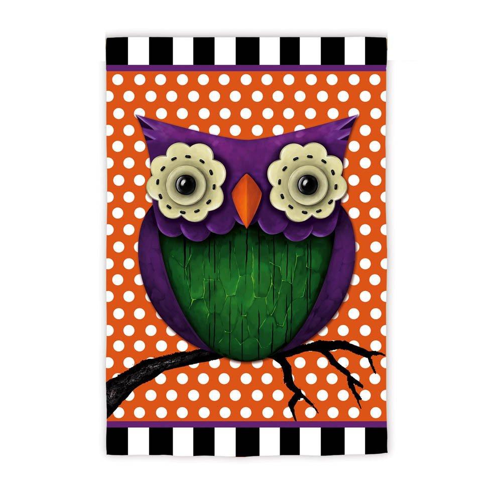 Amazon.com : Whimsy Owl Garden Flag Size: 18\