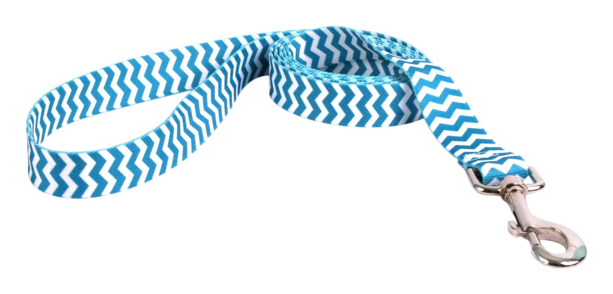 Yellow Dog Design Chevron-Blueberry Dog Leash 1'' Wide And 5' (60'') Long, Large