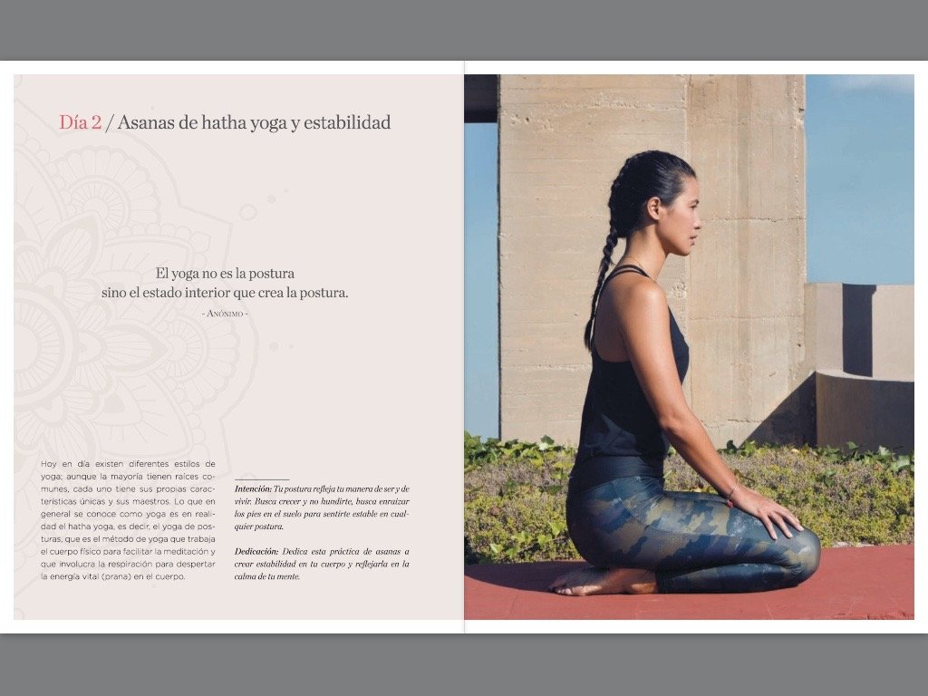 Mi diario de yoga (Spanish Edition): Xuan Lan: 9788416449262 ...