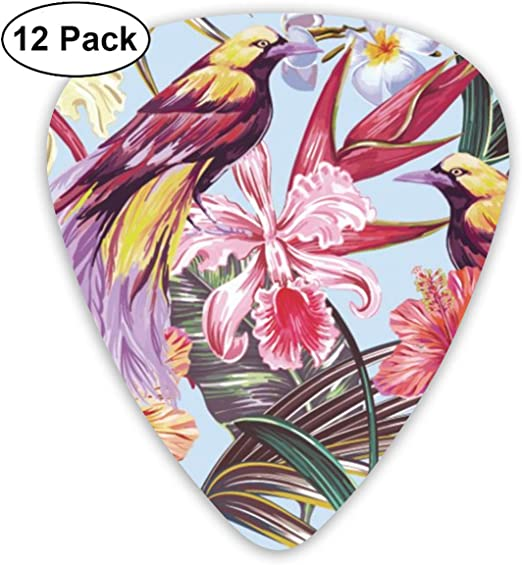 Cavdwa Palm Leaves, Jungle Leaf, Hibiscus, Orchid Flower, Bird of Paradise 12 púas de Guitarra Personalizadas 0,96 mm, 0,71 mm, 0,46 mm, Moda para Guitarra, bajo, tu Guitarra eléctrica: Amazon.es: Hogar