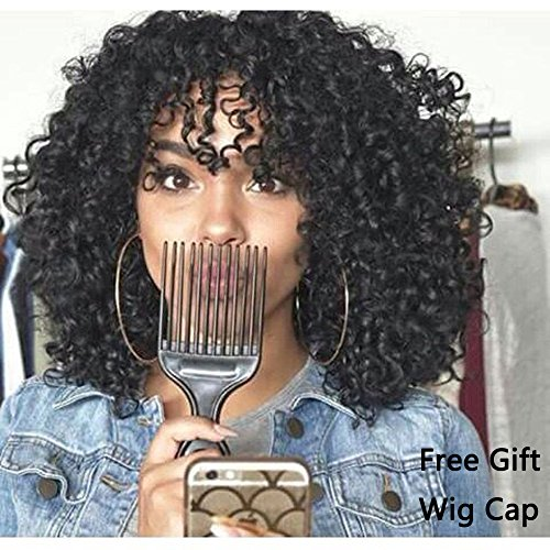 HANNE Afro Kinky Curly Wigs with Free Wig Cap Synthetic Kinkys Curly Party Wig Full Wigs for Black (Afro Wigs Cheap)